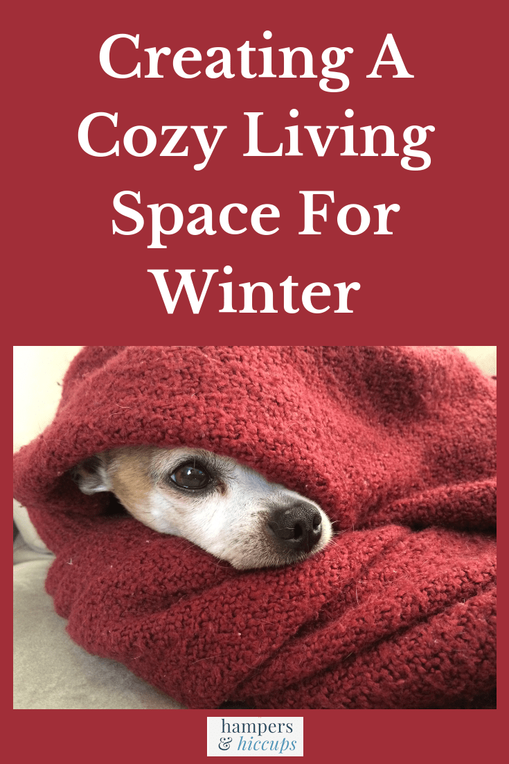 Creating A Cozy Living Space For Winter dog wrapped in a cozy blanket hampersandhiccups