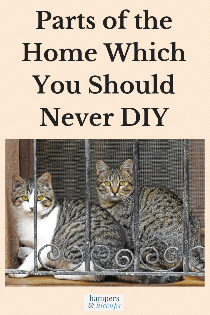 Parts of the Home Which You Should Never DIY cats sitting in barred window hampersandhiccups