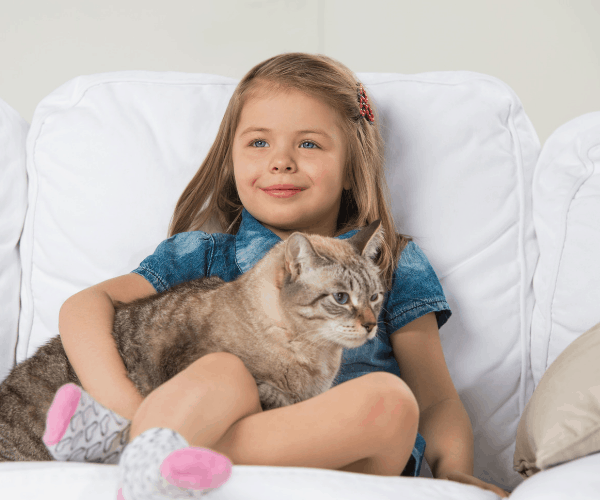 Easy-to-clean furniture girl holding cat on white fabric couch