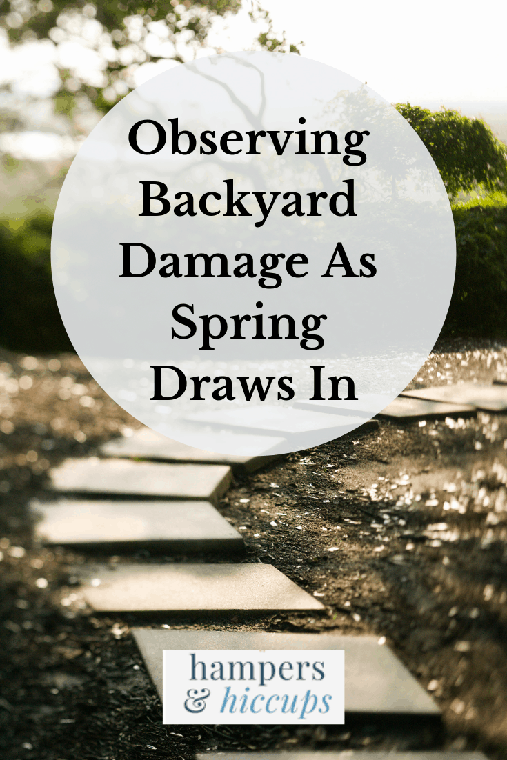 Observing Backyard Damage As Spring Draws In Garden Path of square stones hampersandhiccups
